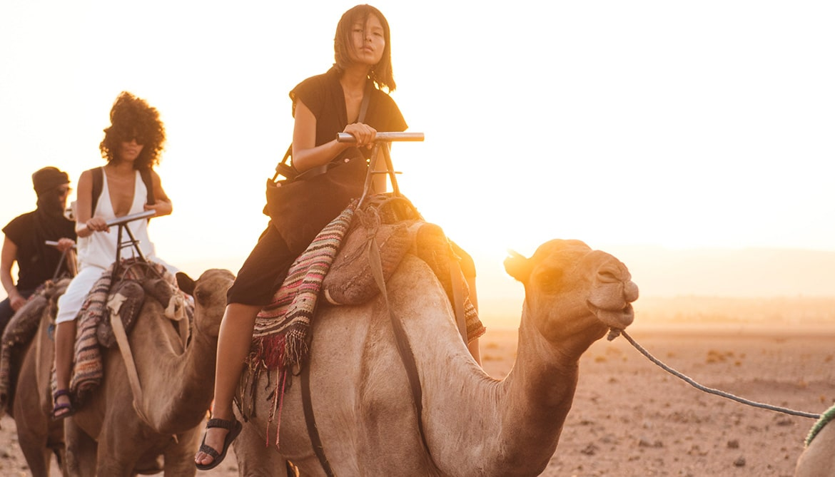 Picture of people riding camels.